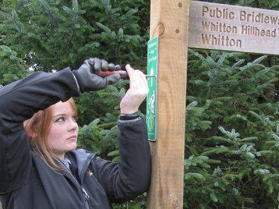 A young volunteer fixes a sign to finger post in the national park