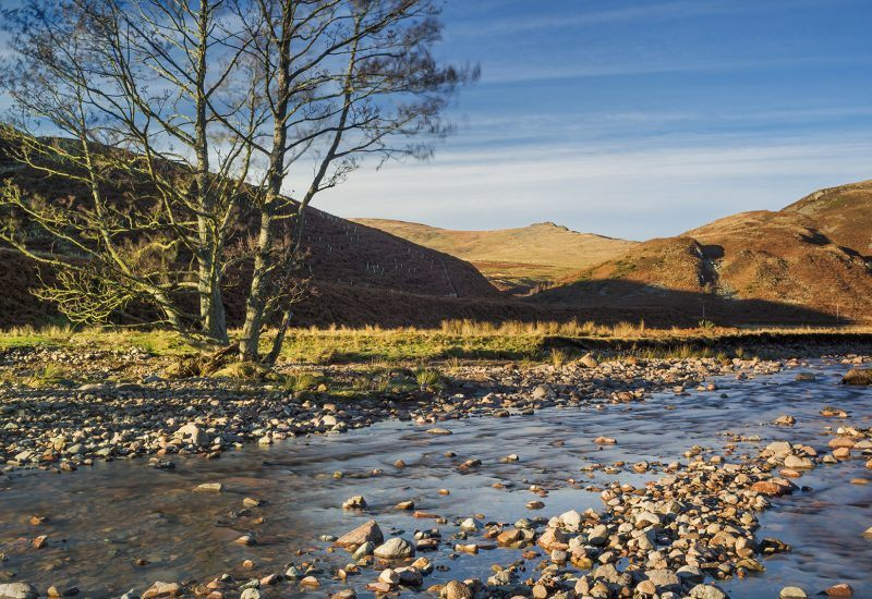 Our River Investigation sessions take place at the River Breamish in the Northumberland National Park.