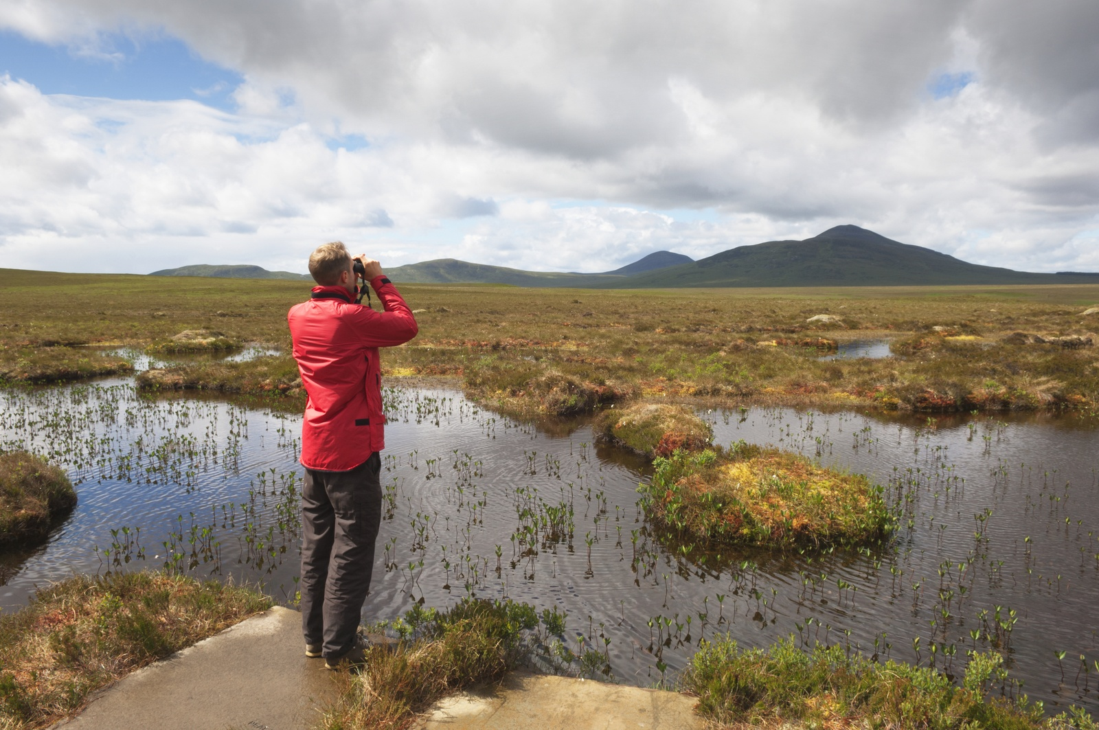 peatland pools at Forsinard Flows RSPB reserve in the heart of the Flow Country credit Iain Sarjeant