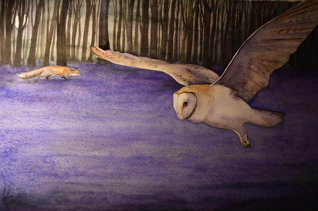 Illustration Bluebell iii ©Jackie Morris