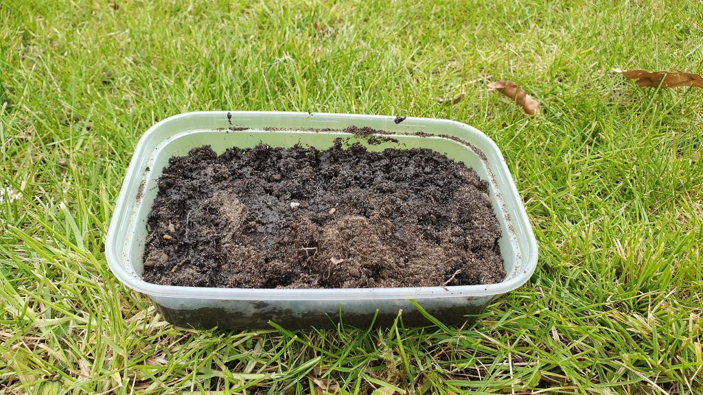 A plastic container filled with soil