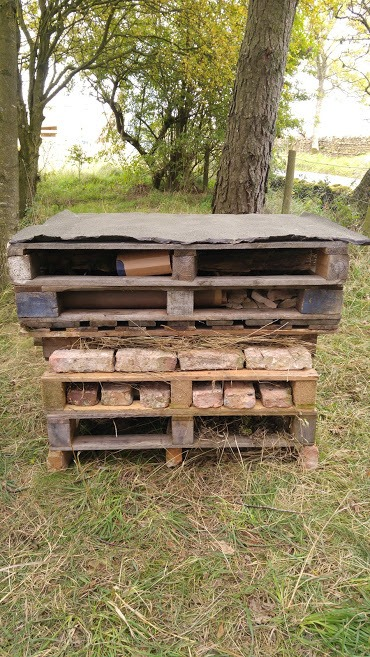 A bug hotel made from wood