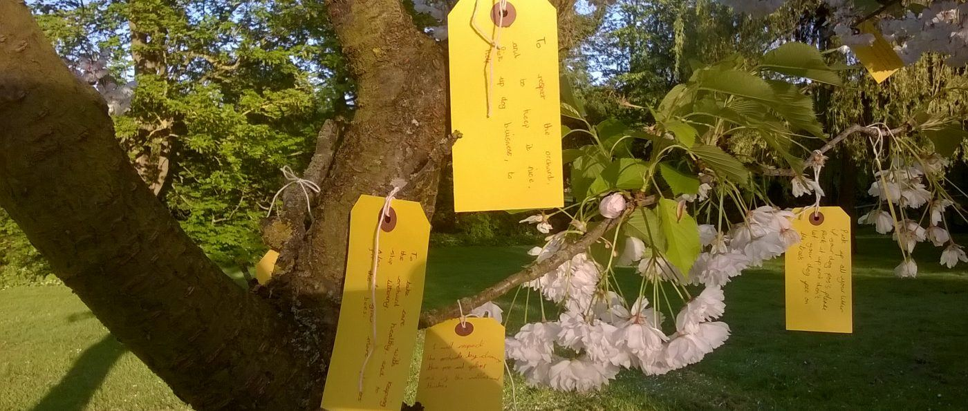 handwritten message tied to a tree