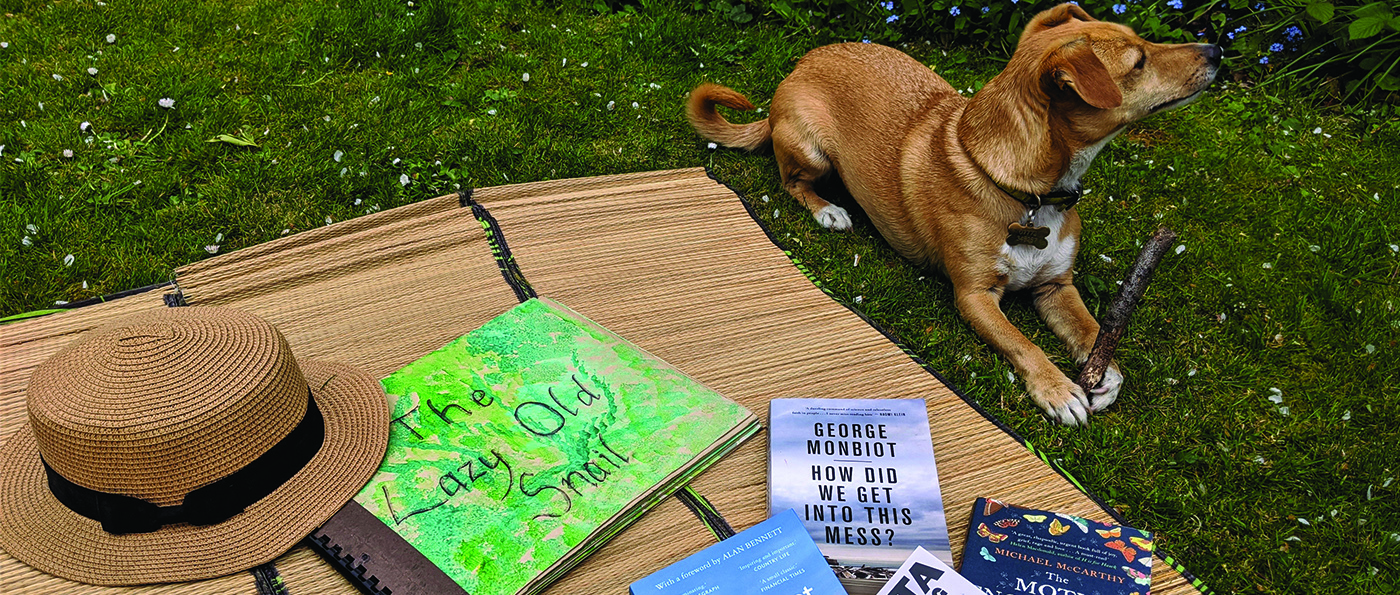 A dog sits next to a picnic blanket with a pile of books spread out to see