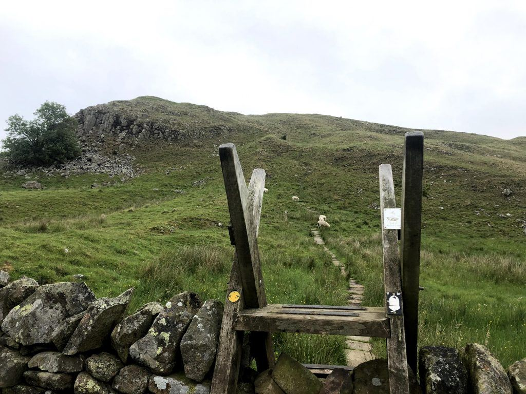 Ladder stile over Hadrian's Walll