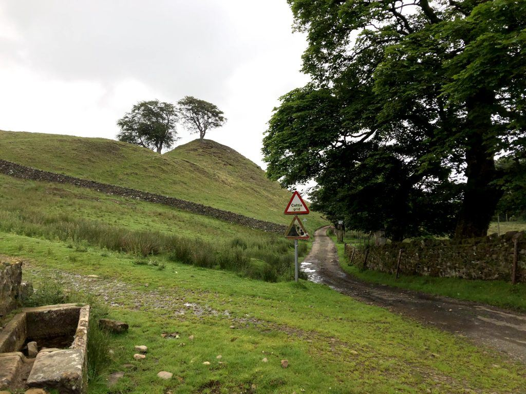 A farm road running through Walltown Country Park on Hadrian's Wall