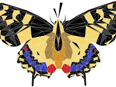 a geometric illustration of a butterfly