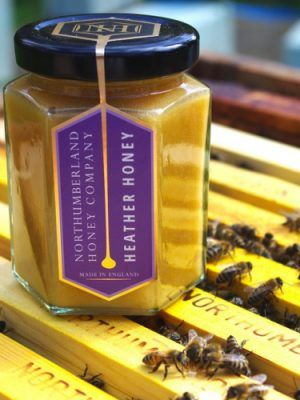 Northumberland Honey on a bee hive