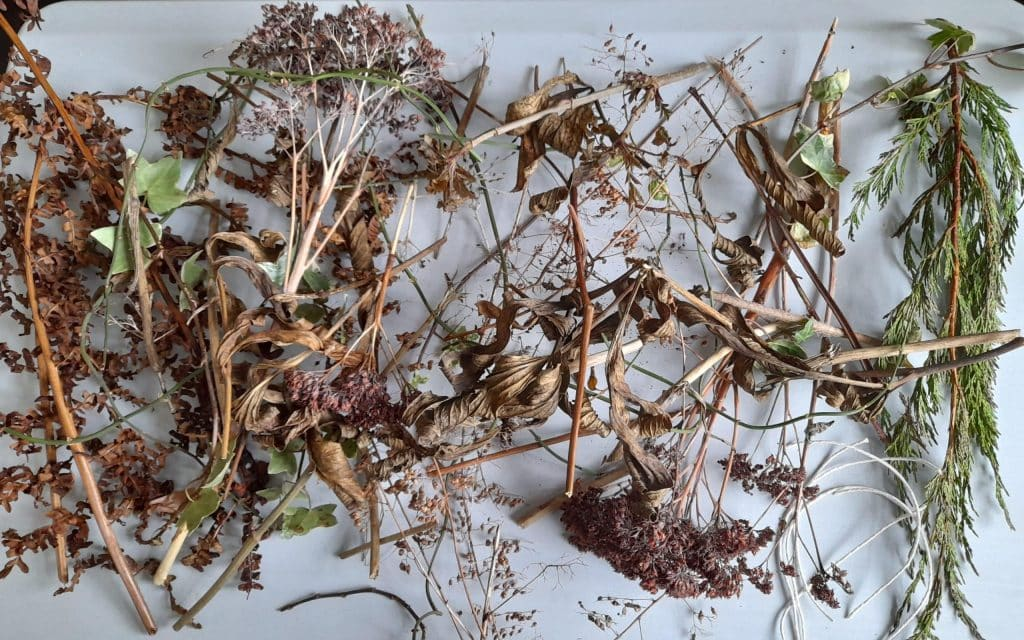 A collection of nest making materials including twigs, leaves and grasses.