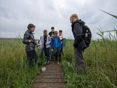 A National Park Ranger stands ona wooden boardwalk taking to a group of children; long grass surrounds them.