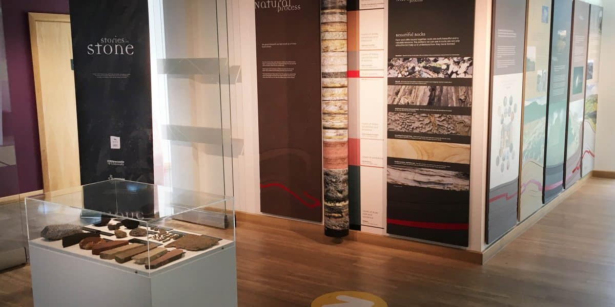 The Stories in Stone exhibtion at The Sill with a cabinet containing stone artefacts in the foreground.