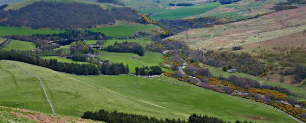 A view of the Breamish Valley in Northumberland. A river snakes through the landscape surrounded by yellow gorse trees. Clouds hang low in the sky and the view goes on for miles.