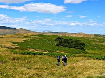 A small group of walkers, walking in the rolling hills of the National Park.